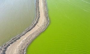 Aerial Saltscapes Photo | agencegrafik.